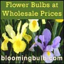Bulb and seed supplies